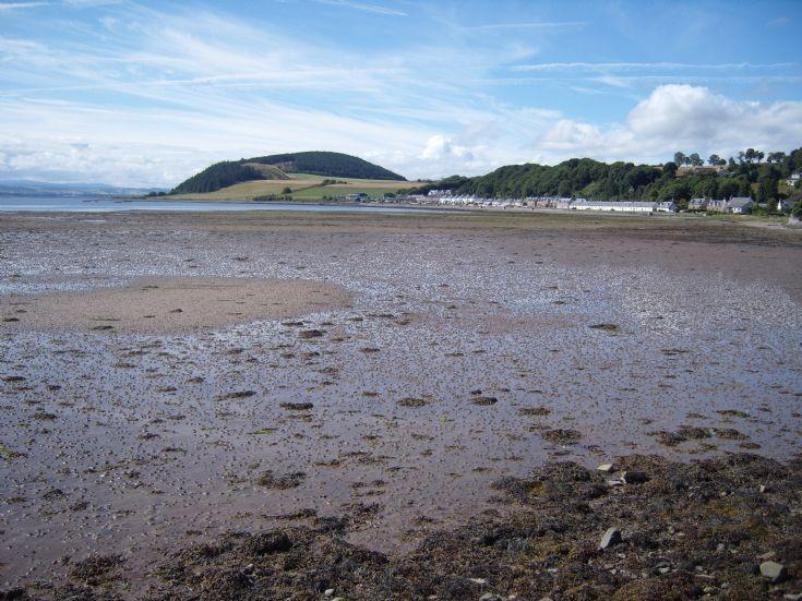 Low Tide 2010
