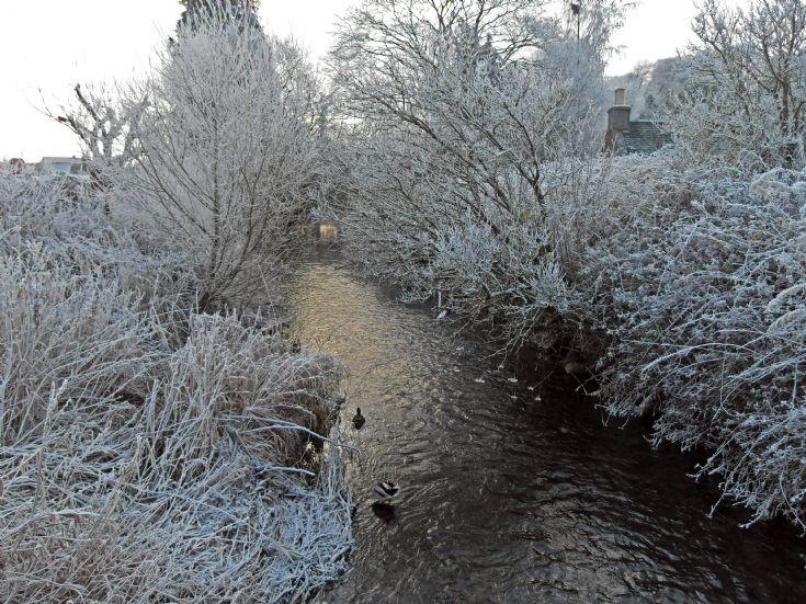 Avoch Burn in the frost.