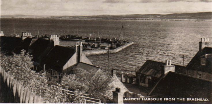 Avoch Harbour from the Braehead