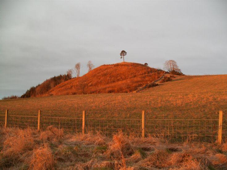 Sunrise at Ormond Hill