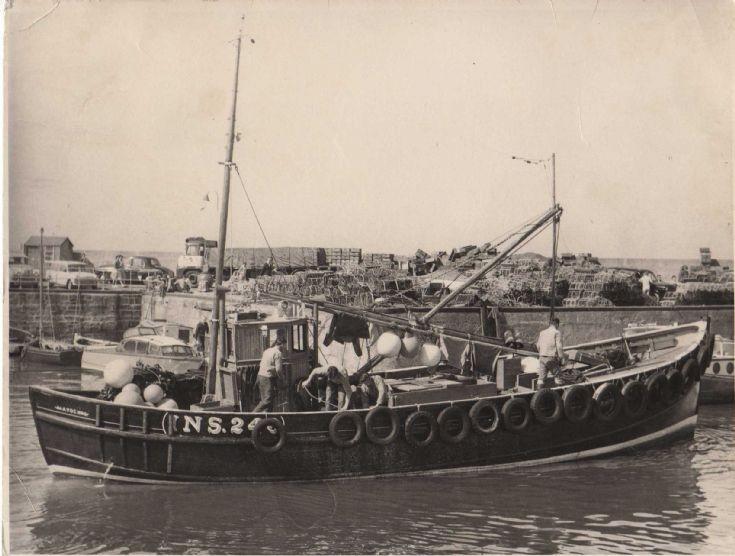 Rosehaugh INS 246