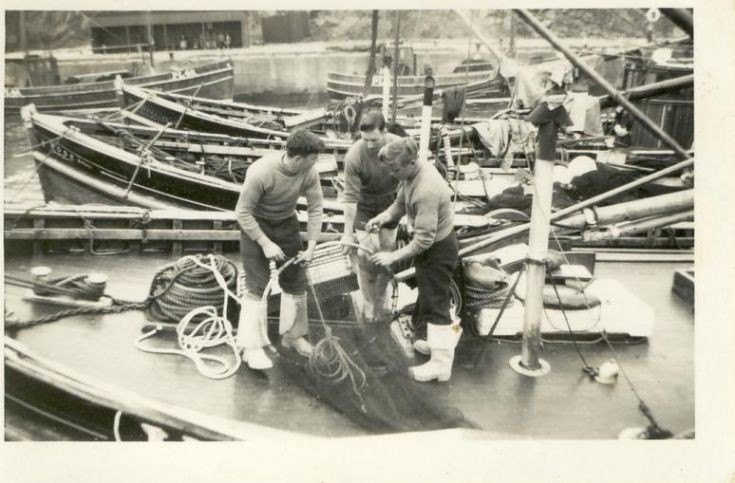 Repairing the Brailer  1950's